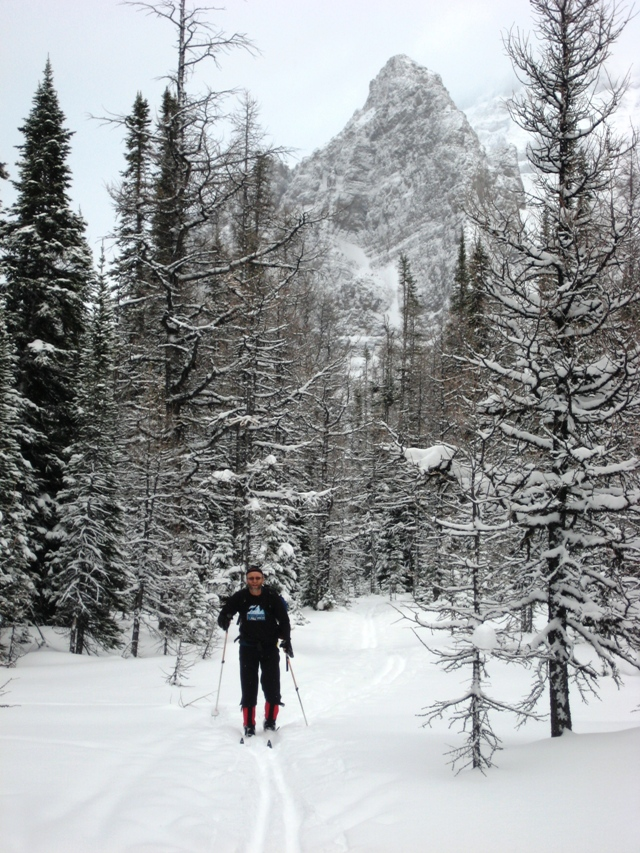 Dad skiing towards Schaeffer Lake